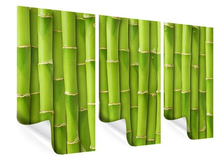 Poster 3-teilig Bambuswand