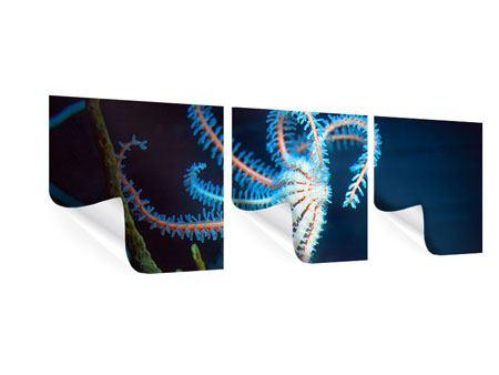 Panorama Poster 3-teilig Aquarium