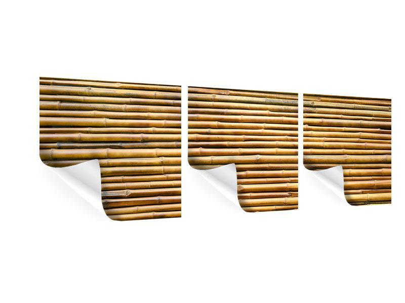 Panorama Poster 3-teilig Bambus