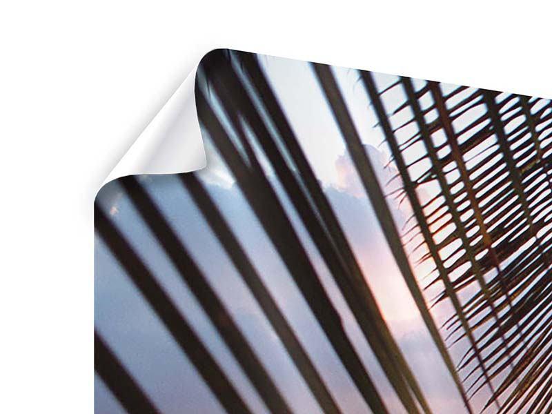 Panorama Poster 3-teilig Unter Palmenblätter