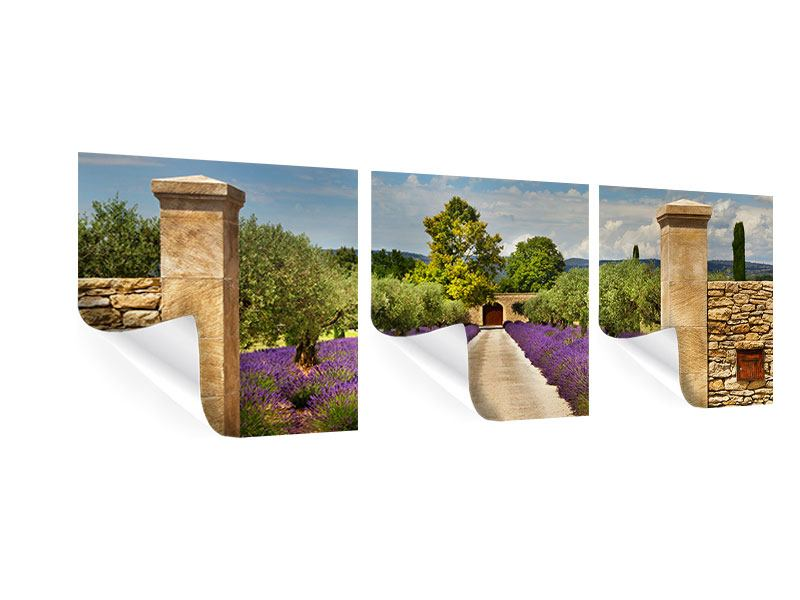 Panorama Poster 3-teilig Lavendel-Garten