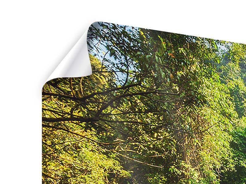 Panorama Poster 3-teilig Das Gewässer