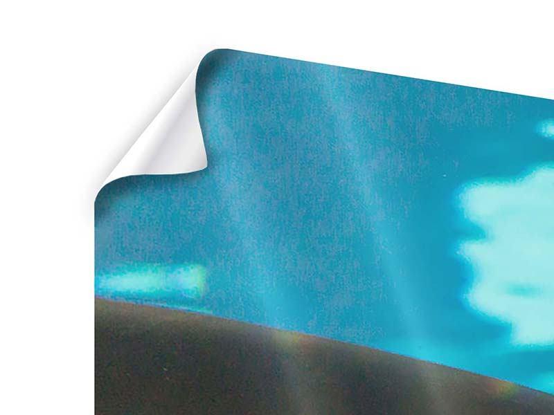 Panorama Poster 3-teilig Der Haifisch