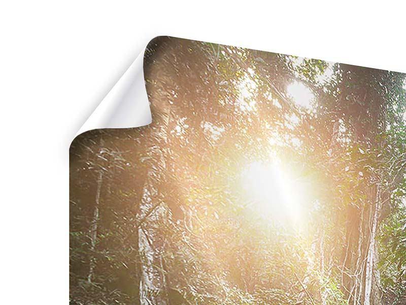 Panorama Poster 3-teilig Naturschauspiel
