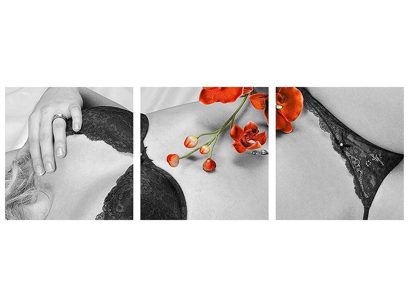 Panorama Poster 3-teilig Dessous-Schönheit