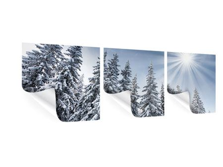 Panorama Poster 3-teilig Wintertannen