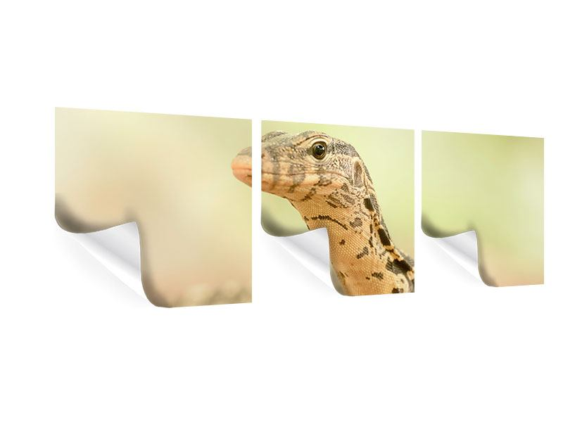 Panorama Poster 3-teilig Eidechse
