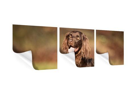 Panorama Poster 3-teilig Der Jagdhund