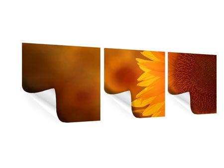 Panorama Poster 3-teilig Macro-Sonnenblume