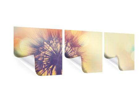 Panorama Poster 3-teilig Die Pusteblume im Licht