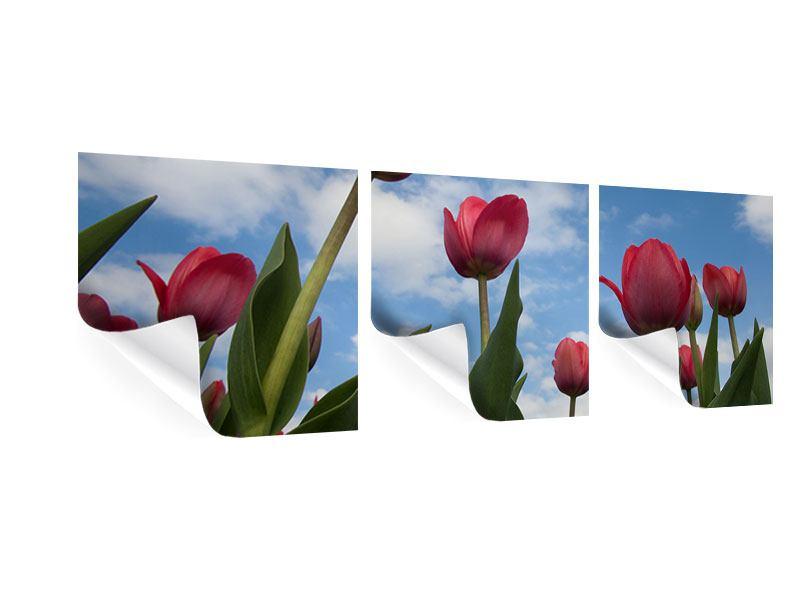 Panorama Poster 3-teilig Tulpen im Himmel