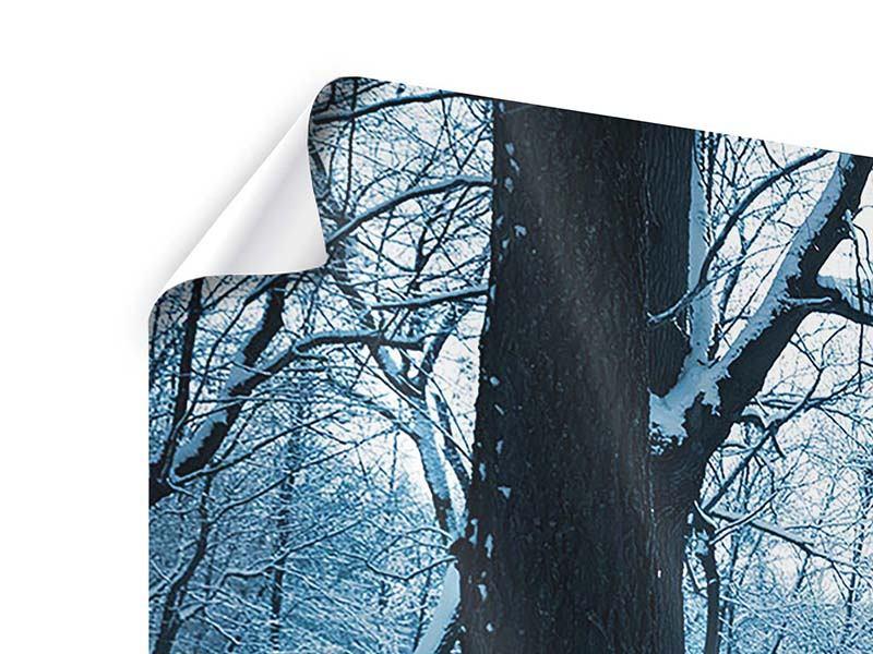 Panorama Poster 3-teilig Der Wald ohne Spuren im Schnee