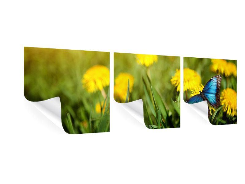 Panorama Poster 3-teilig Der Löwenzahn und der Schmetterling