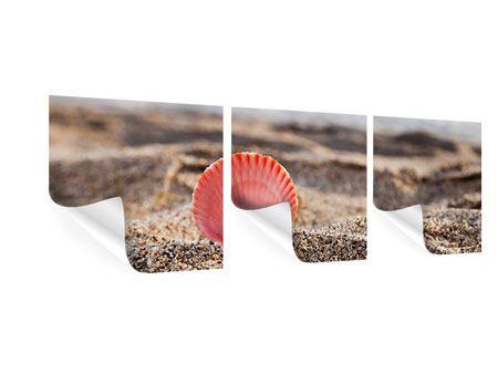Panorama Poster 3-teilig Die Muschel