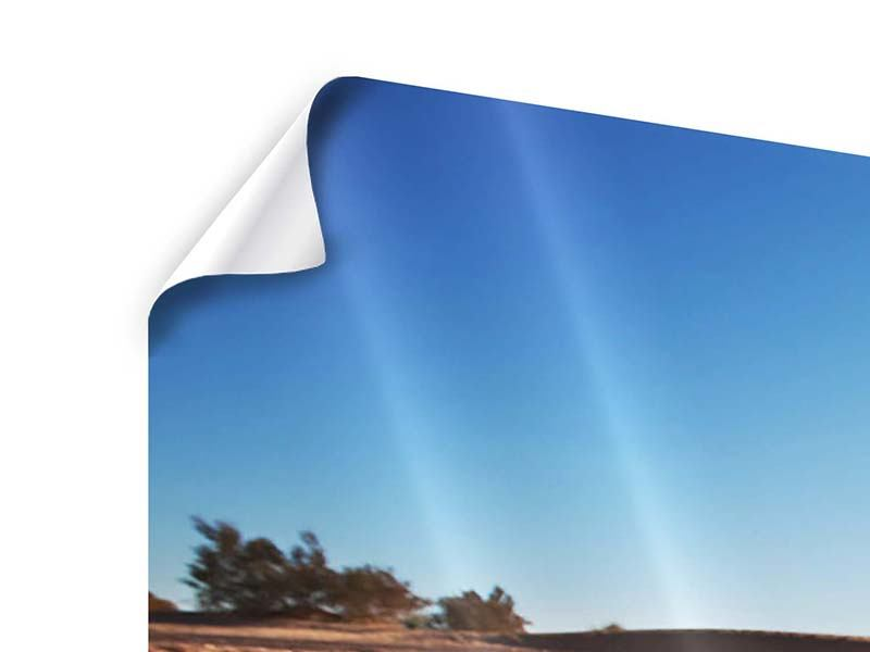 Panorama Poster 3-teilig Dürre