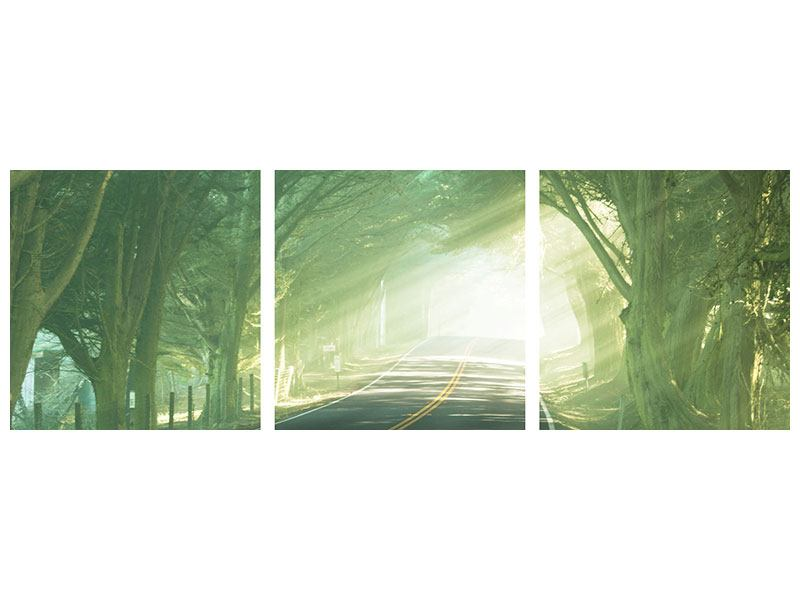 Panorama Poster 3-teilig Die Allee