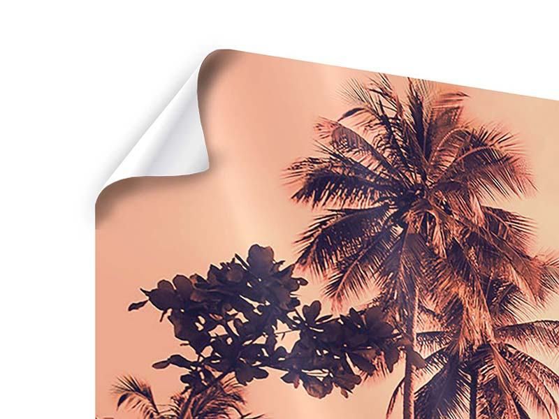 Panorama Poster 3-teilig Tropenparadies