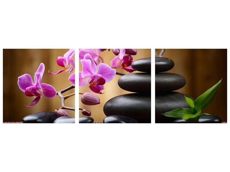 Panorama Poster 3-teilig Wellness-Steine