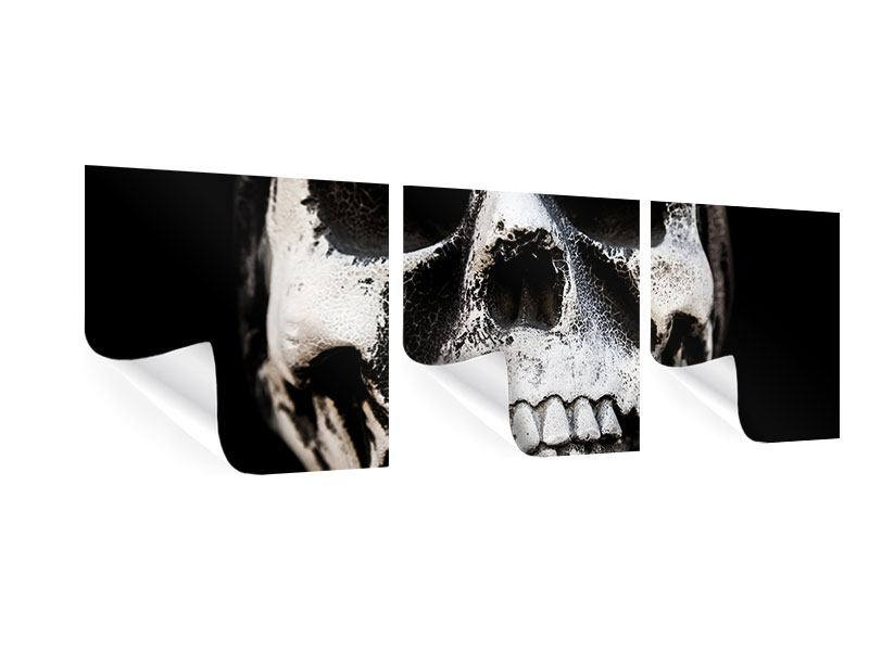 Panorama Poster 3-teilig Skull