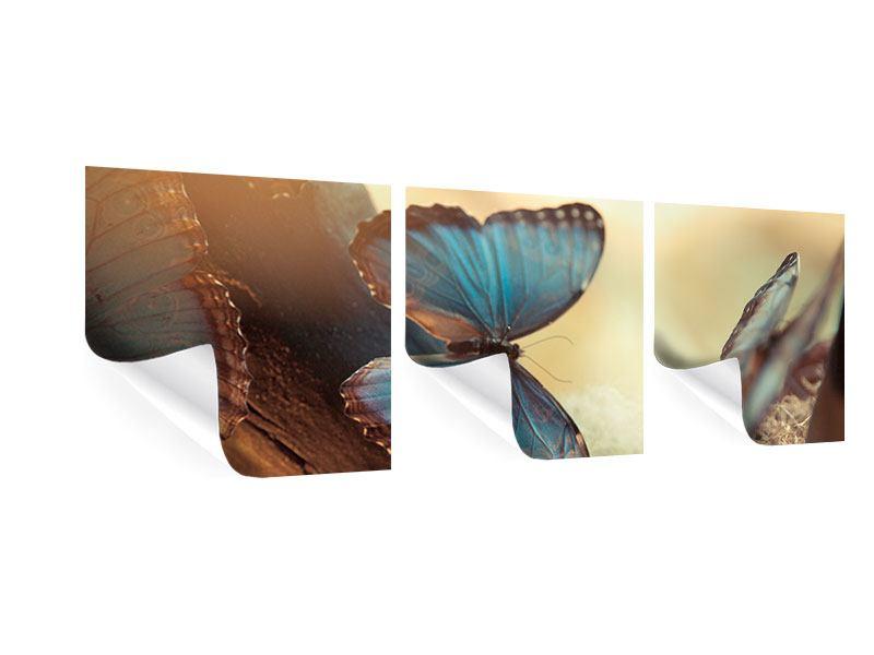 Panorama Poster 3-teilig Schmetterlinge