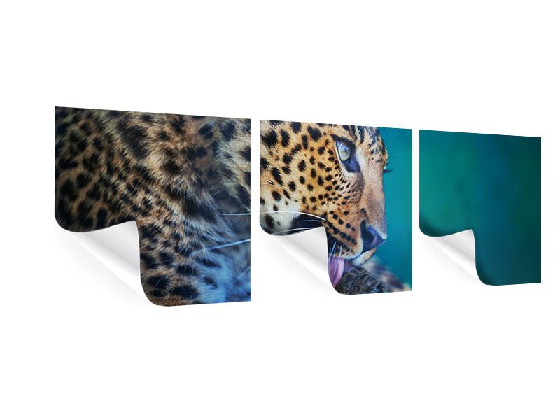 Panorama Poster 3-teilig Leopard XL