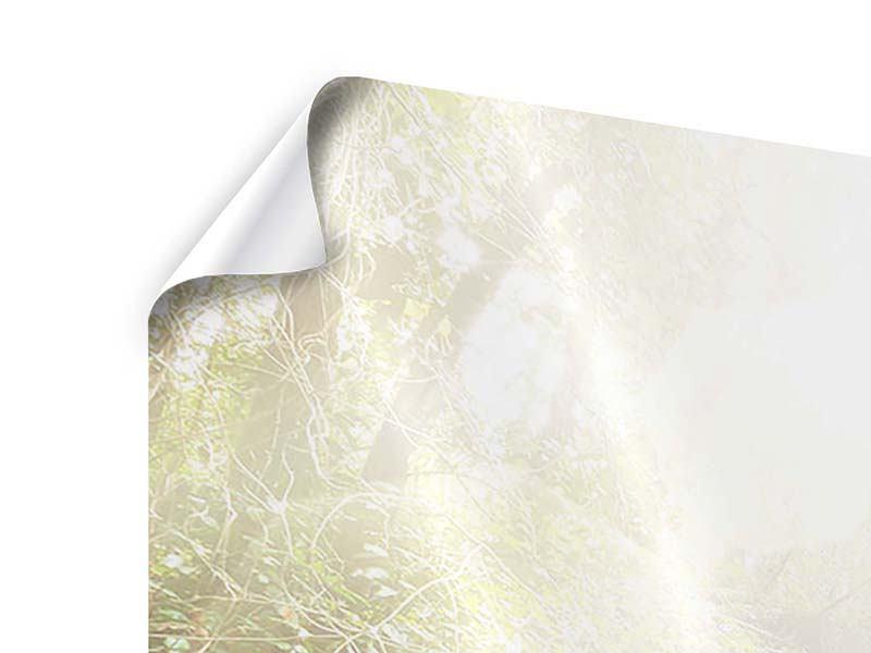 Panorama Poster 3-teilig Die grüne Lagune