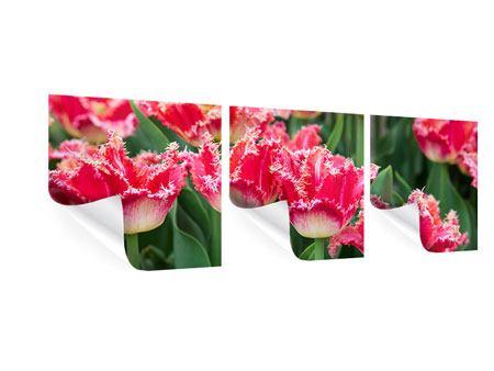 Panorama Poster 3-teilig Die Tulpenwiese