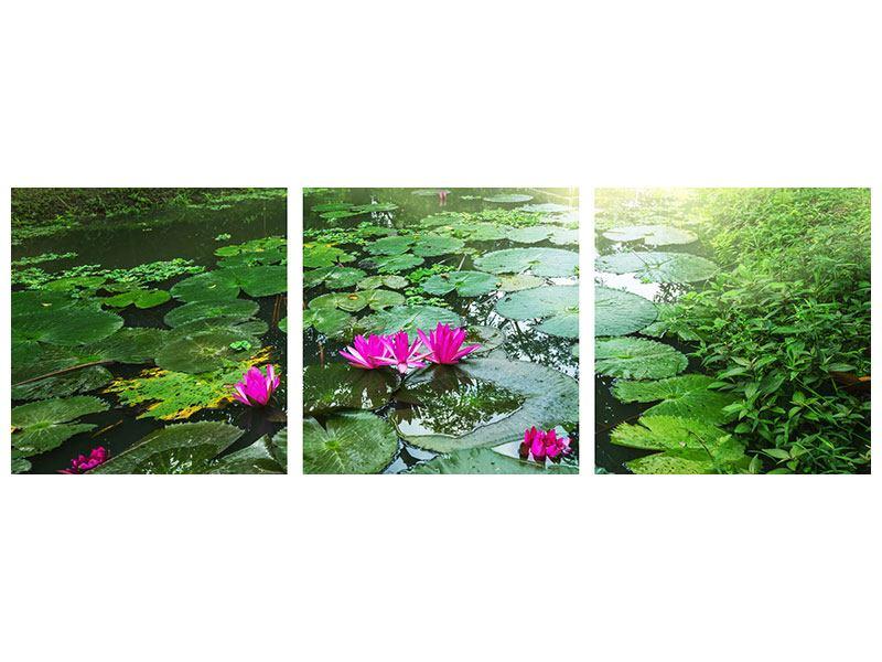 Panorama Poster 3-teilig Gartenteich