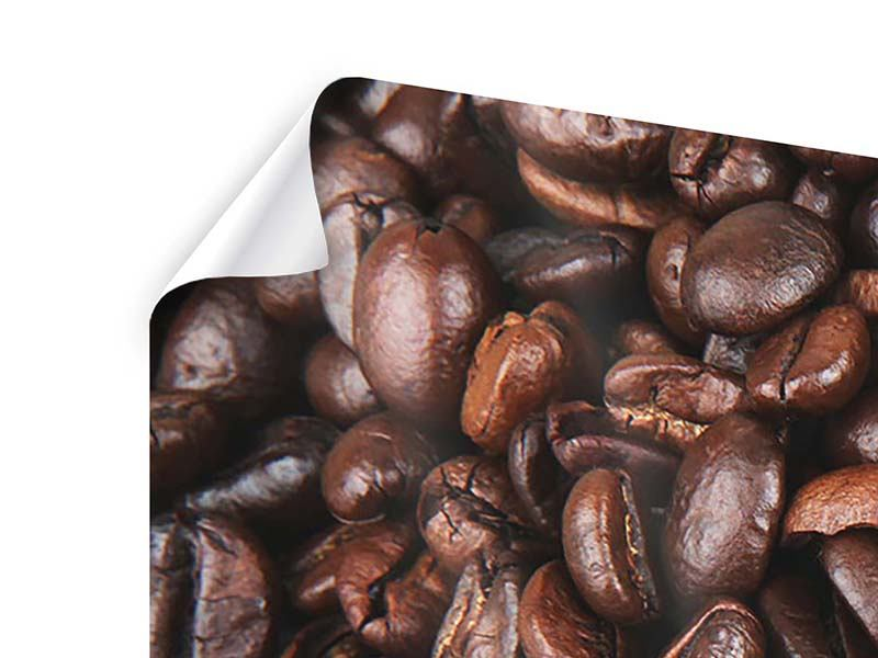 Panorama Poster 3-teilig Kaffeebohnen in XXL