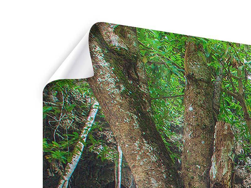 Panorama Poster 3-teilig Fliessgewässer