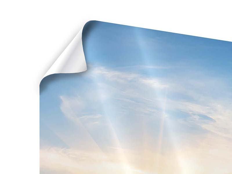 Panorama Poster 3-teilig Sonnenaufgang im Park