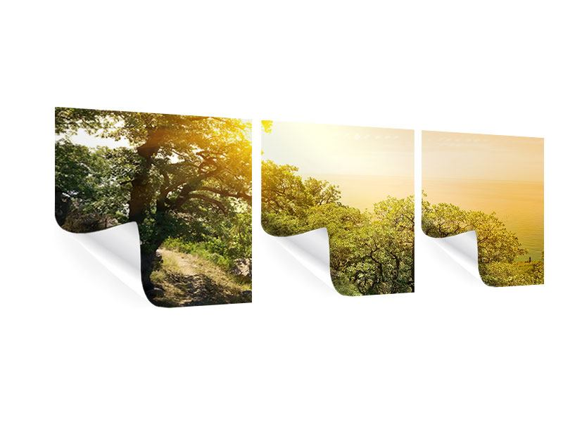 Panorama Poster 3-teilig Sonnenuntergang in der Natur