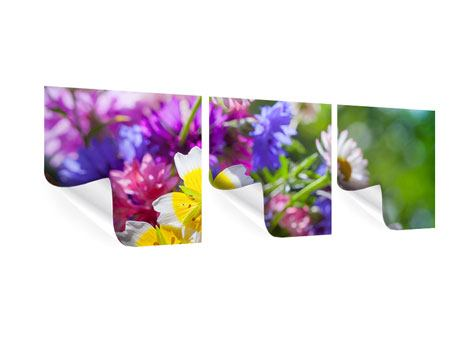 Panorama Poster 3-teilig XXL Gartenblumen