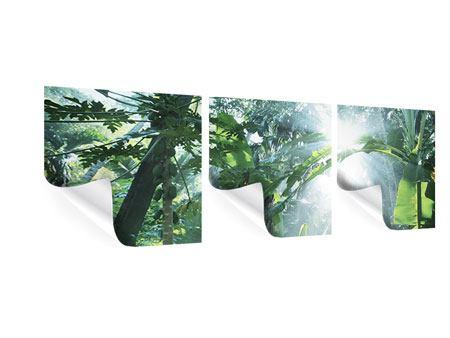 Panorama Poster 3-teilig Dschungelstar