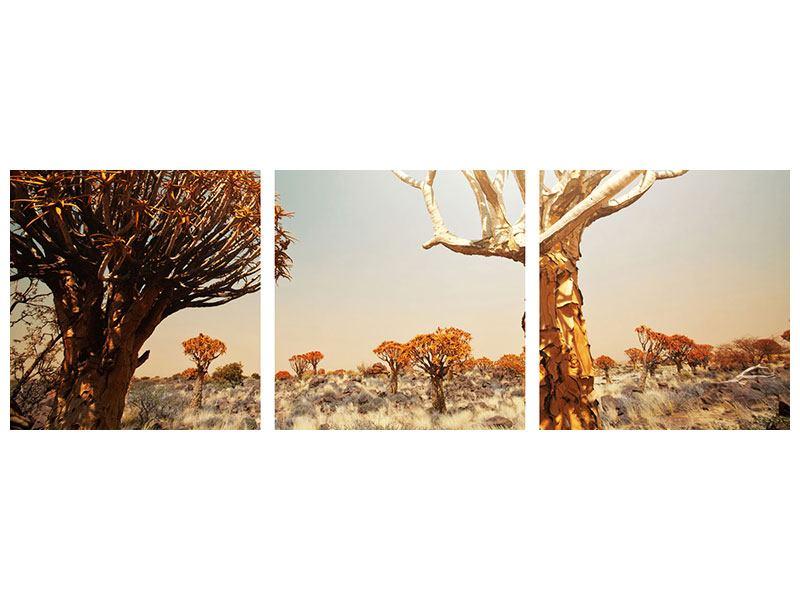Panorama Poster 3-teilig Afrikanische Landschaft