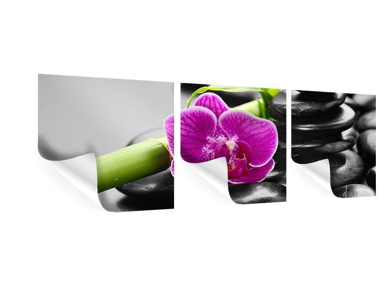 Panorama Poster 3-teilig Feng-Shui-Orchidee