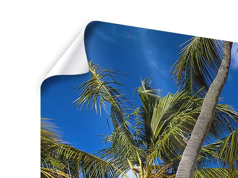 Panorama Poster 3-teilig Mauritius