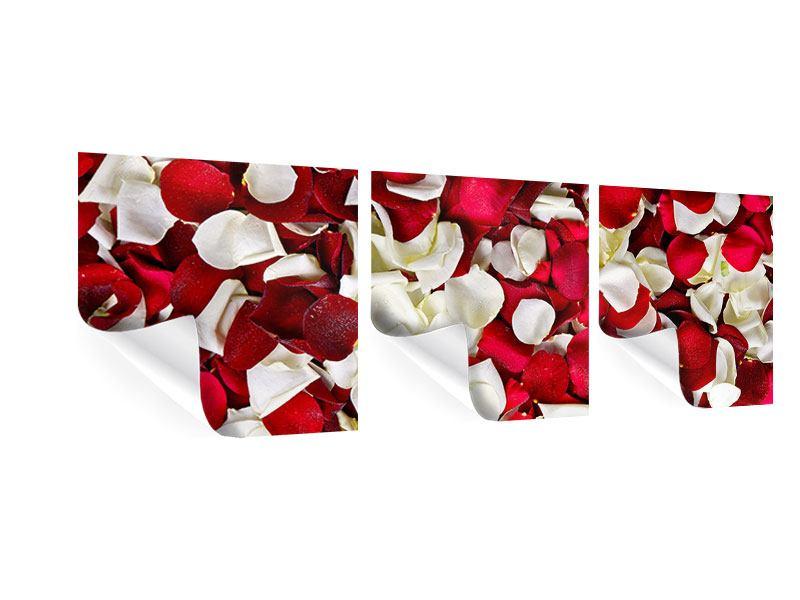 Panorama Poster 3-teilig Rosenblätter