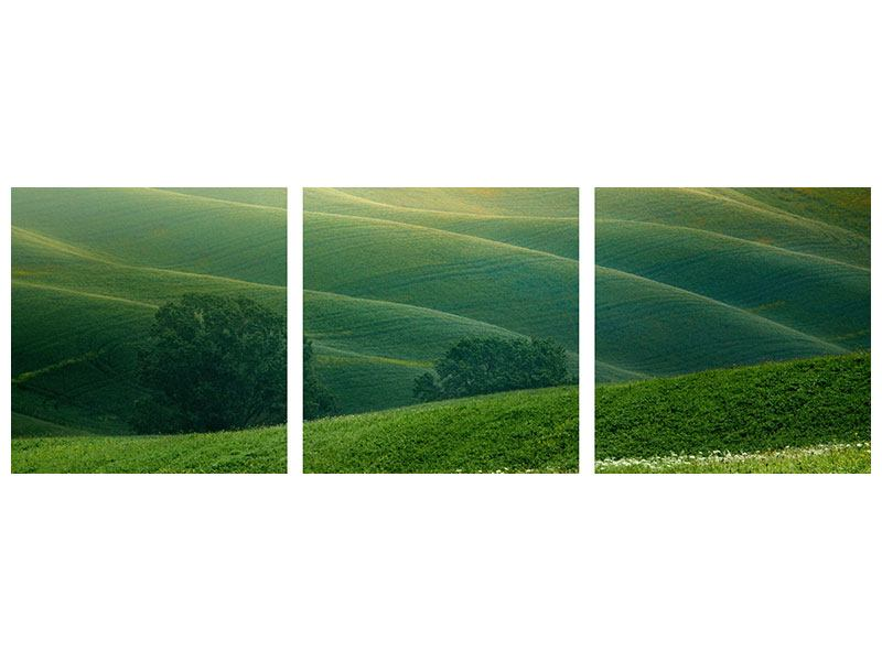 Panoramic 3 Piece Poster Tuscany