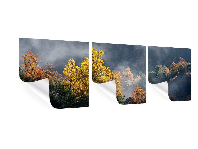 Panorama Poster 3-teilig Mondscheinwald