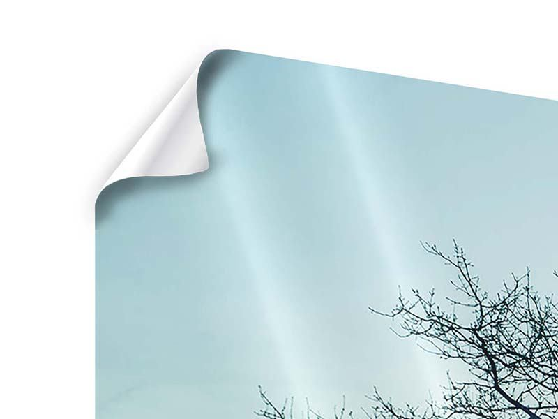 Panorama Poster 3-teilig Der Zauberbaum