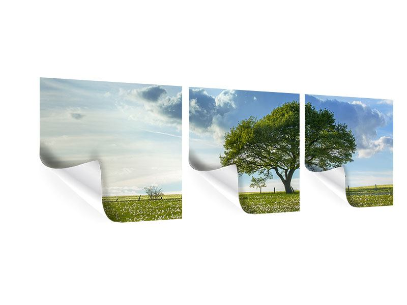 Panorama Poster 3-teilig Frühlingsbaum