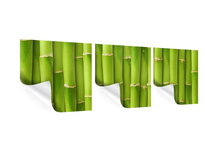 Panorama Poster 3-teilig Bambuswand