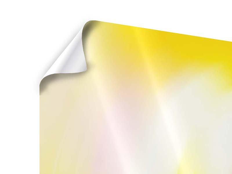 Panorama Poster 3-teilig Abstrakte Farbkreise