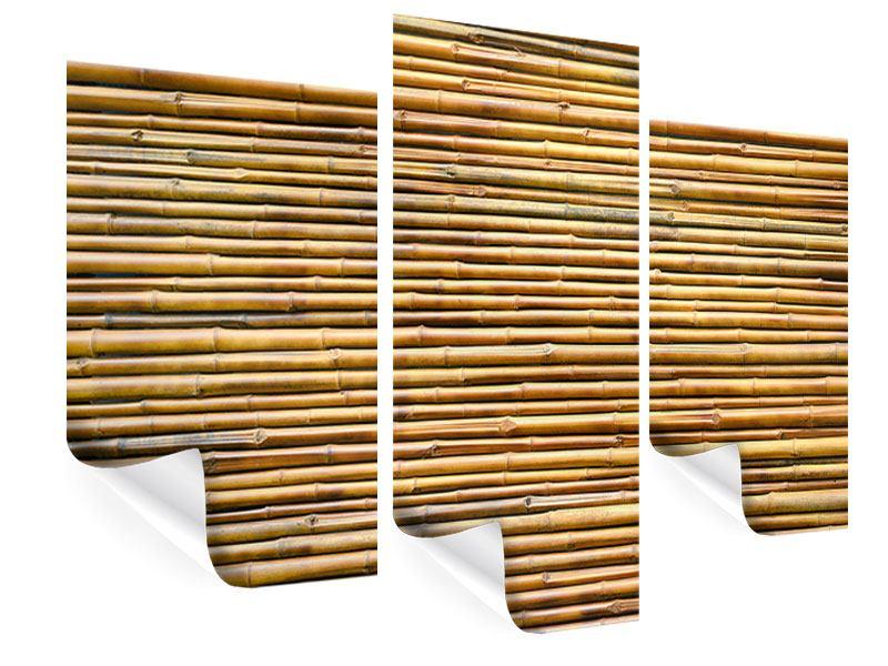 Poster 3-teilig modern Bambus