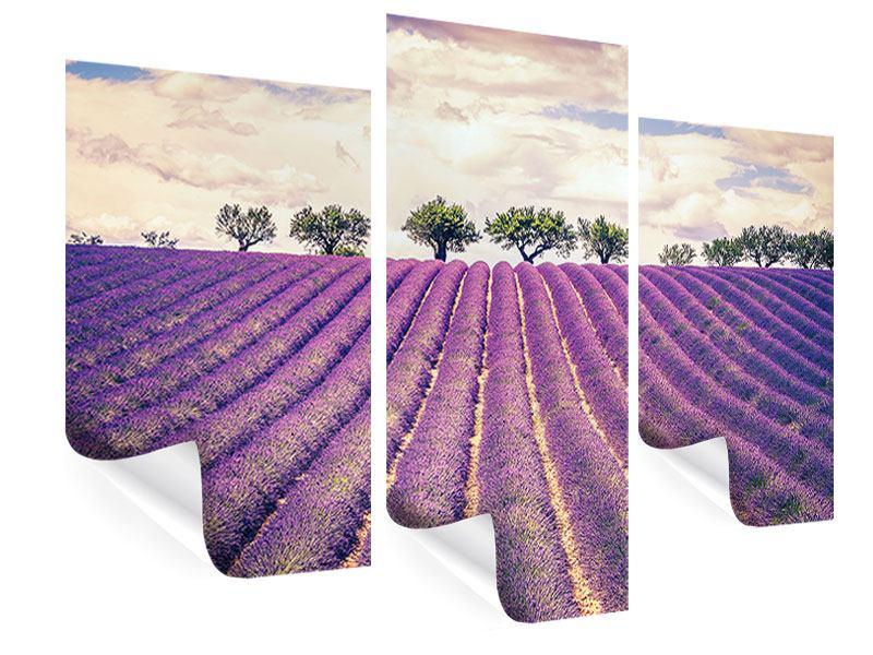 Poster 3-teilig modern Das Lavendelfeld
