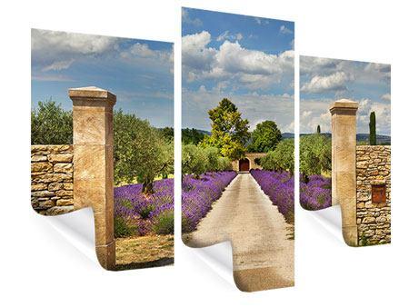 Poster 3-teilig modern Lavendel-Garten