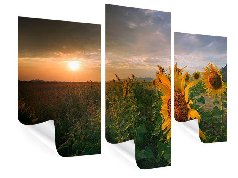 Poster 3-teilig modern Sonnenblumen im Lichtspiel