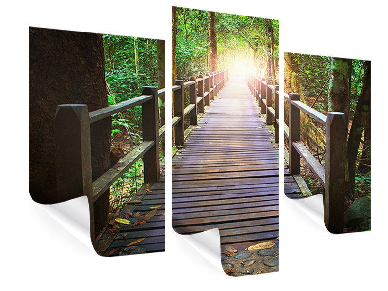 Poster 3-teilig modern Die Brücke im Wald