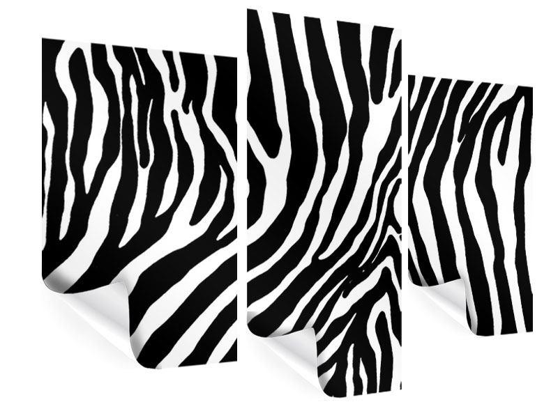 Poster 3-teilig modern Zebramuster